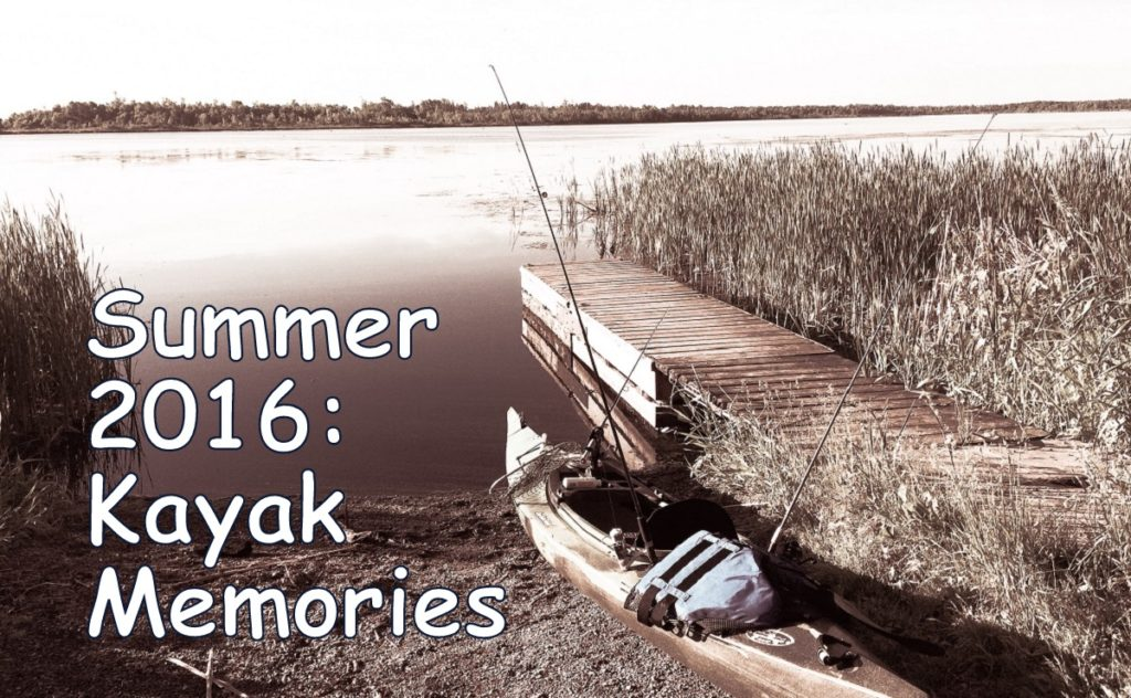 Summer 2016: Kayak Memories
